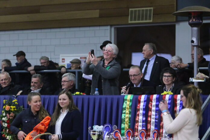 NWPCS National Stallion Show. Photo: Theo ten Brinke