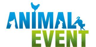 Animal event 2019