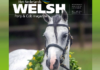 cover Welsh Magazine
