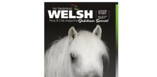 Welsh Magazine 6-2019
