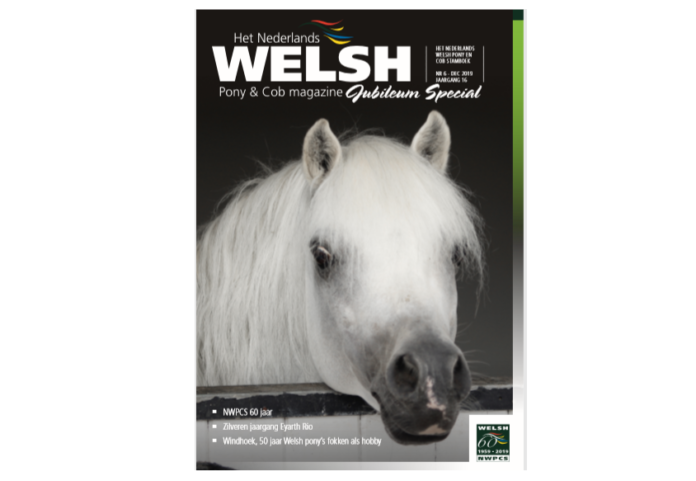 Welsh Magazine 6-2019