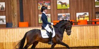 Veerle van Hof in actie met Nijebert's Marc waarmee zij de HORKA prijs won. Foto Digishots