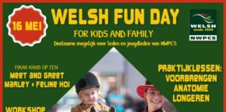 Welsh Fun Day 16 mei 2020