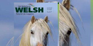 Cover Welsh Pony en cob Magazine 2 -april 2020