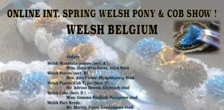 Welsh Belgium Online Spring Show 2020