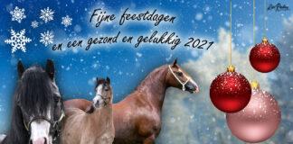 NWPCS kerstwens 2020 Kim Renders