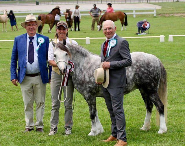 Gerrit van Beek en Ad Beekman met de overall champion section A Troon Eclipse