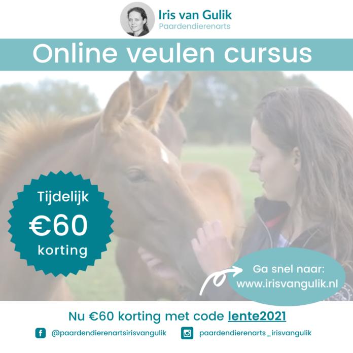 Online veulencursus paardendierenarts iris van gulik