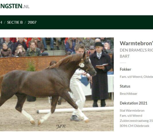 Online hengstenboek, Hielke