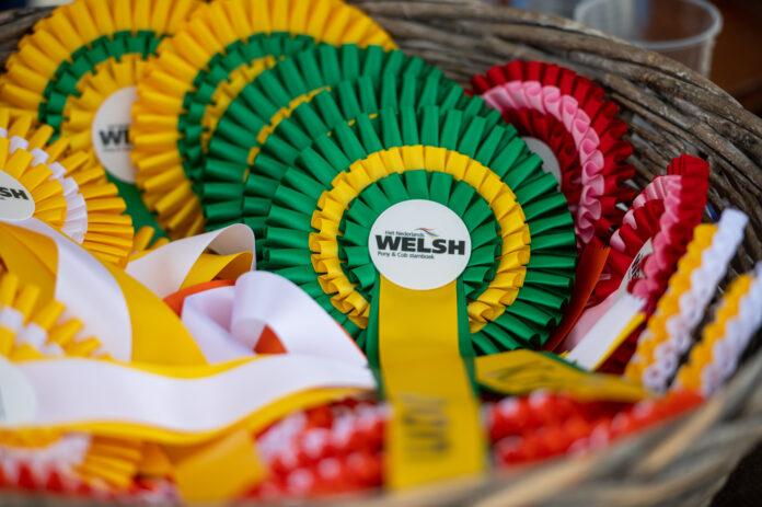 rozetten Welsh keuring